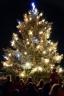 Rozsvícení vánočního stromu 2013
